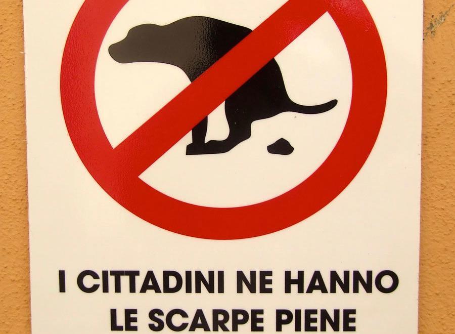 Plukk opp – på italiensk